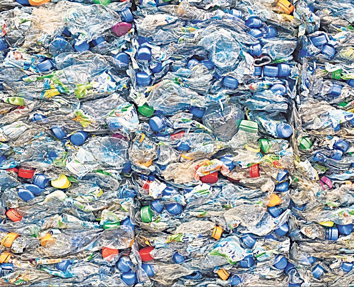 Zerdrückte Plastikflaschen. Thema: PET-Flaschen