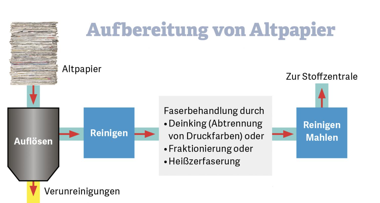 Grafik zur Aufbereitung von Altpapier