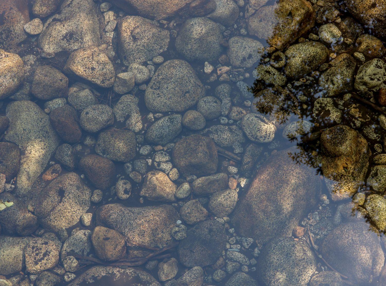 Detail eines Gewässers. Thema: Mehrwegverpackungen